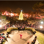 Bob Leavitt-Tree Lighting 2013